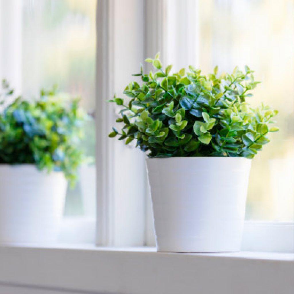 Por qué elegir ventanas climalit en mi hogar